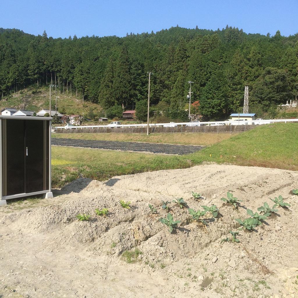 2月29日まで!平成28年度 熊野市市民農園利用者を募集しています!_写真1